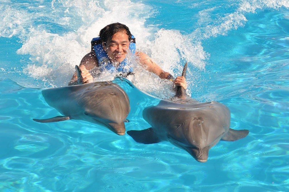 Nadando com golfinhos em Cancun. Pra quê nadar se tem quem nade por mim, kkk